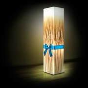 Светильники. Дизайнерские светильники,  интерьерные светильники
