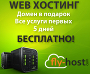 Веб - хостинг (web hosting)